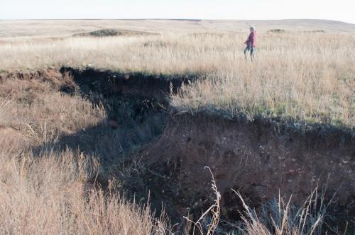 Остатки раскопа на поселении Горный-1